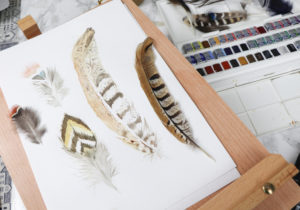 uni-PIN feather drawing