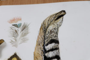 uni-PIN drawing, Feather drawing Uni Pin Ella Johnston