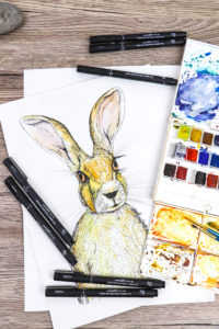 Draw your spring hare with watercolour and uni-PIN (drawing by Ella Johnston)