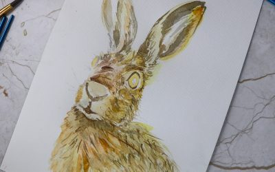 Create a hare artwork with watercolour and PIN pens