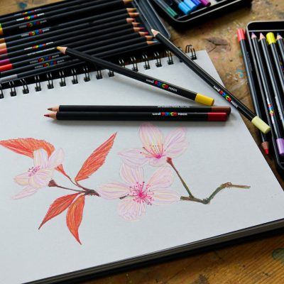 Add to your POSCA art journey with Pencils and Pastels