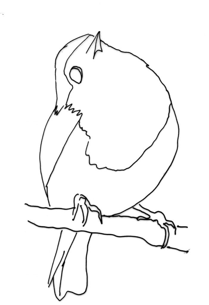 robin template