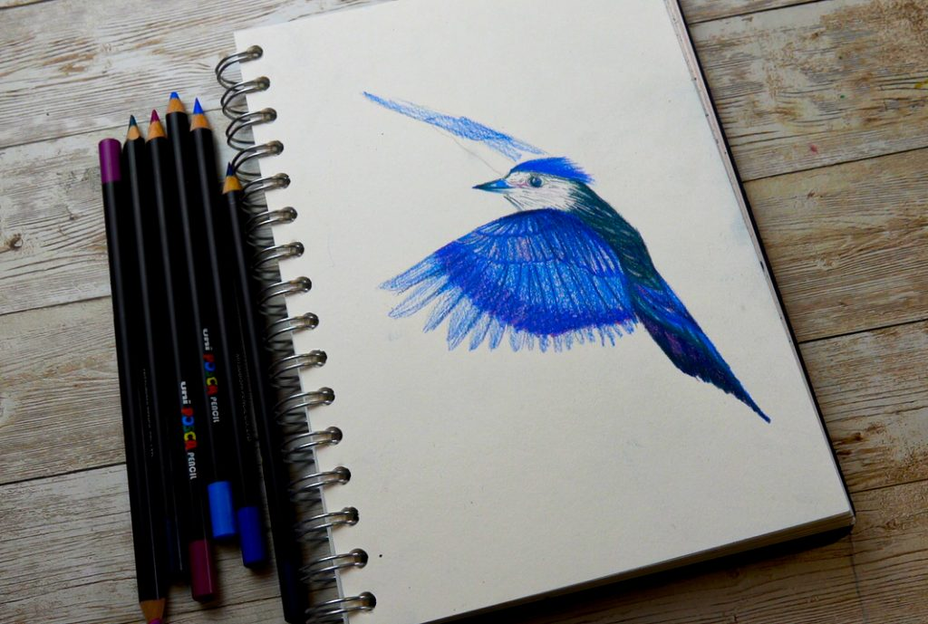 Create tonal drawings with POSCA pencil draw your outline