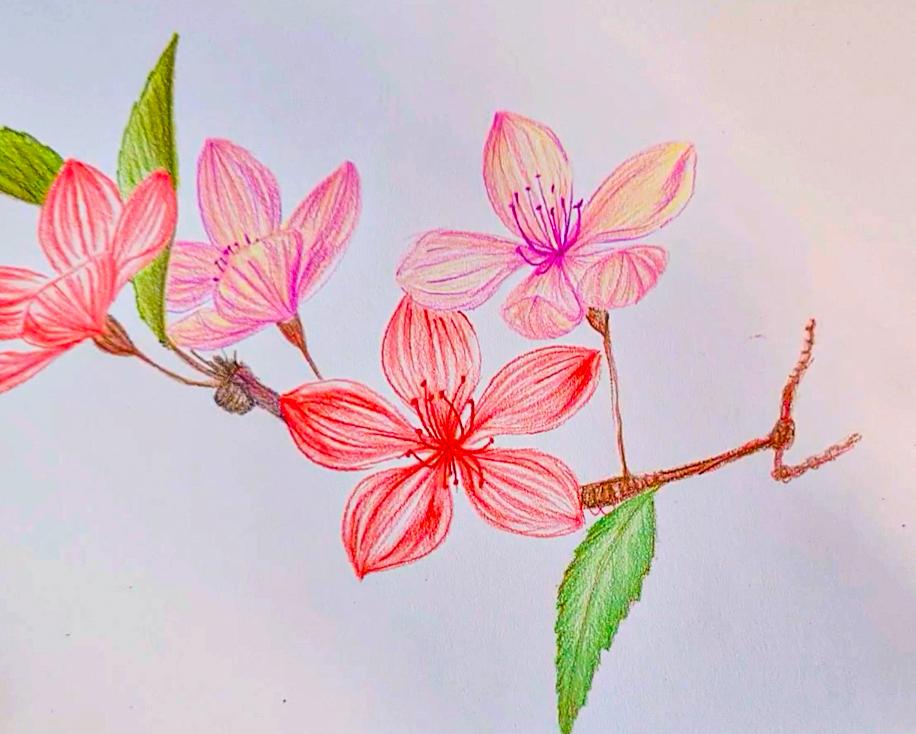 Make colourful artworks with POSCA pencil