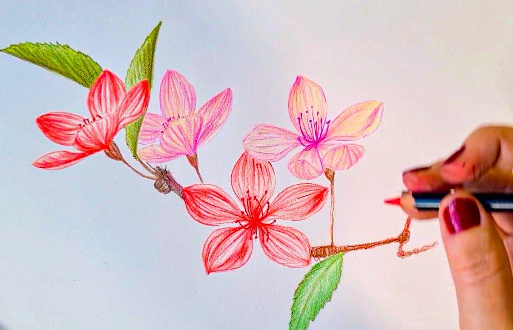 Draw delicate blossom with POSCA PENCILS