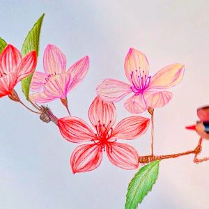 Draw delicate blossom with POSCA PENCILS